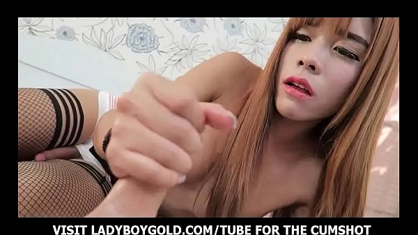 Shemale thai, Frottage, Shemale asian, Asian handjob