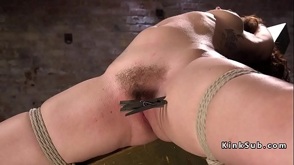 Tie, Hairy anal, Bdsm anal