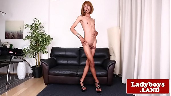 Shemale thai, Shemales, Ladyboy asian