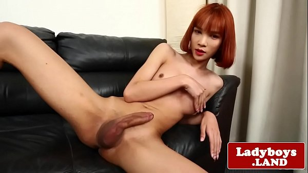 Thai, Shemale thai, Ladyboy asian