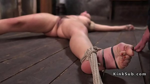 Tied, Whip, Hogtied